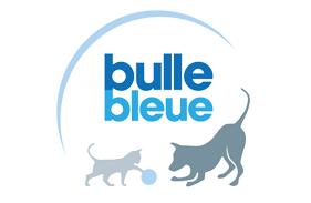 Bulle bleu